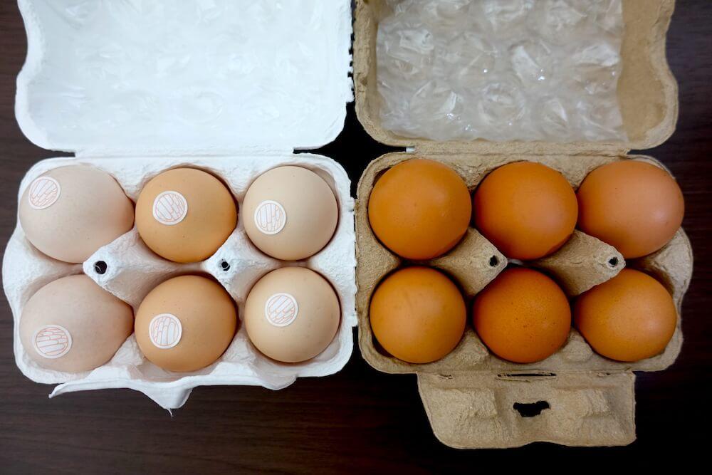 卵の食べ比べ