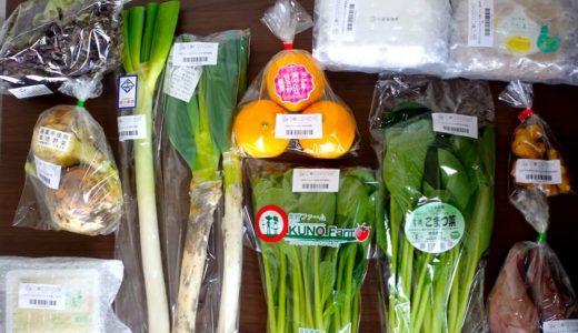 ココノミの野菜宅配を食べた口コミ&評判【初回お試し感覚で利用可能】